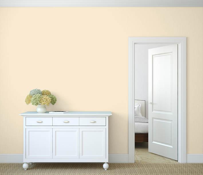 Interiérová barva odstín CURRY 55