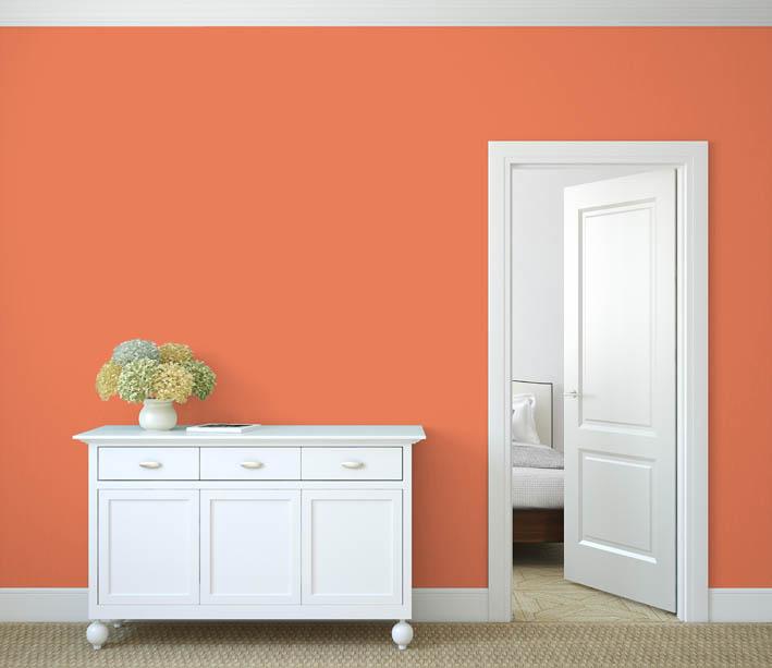 Interiérová barva odstín LACHS 115