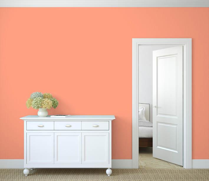 Interiérová barva odstín LACHS 120