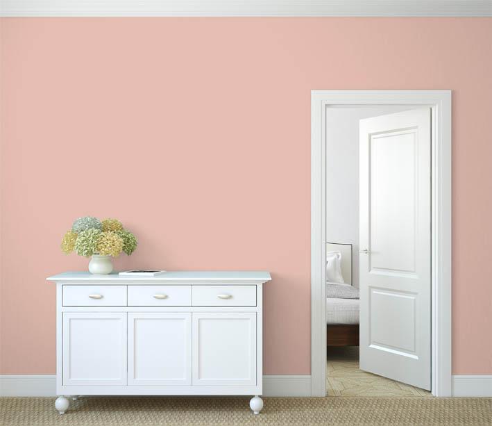 Interiérová barva odstín LACHS 15