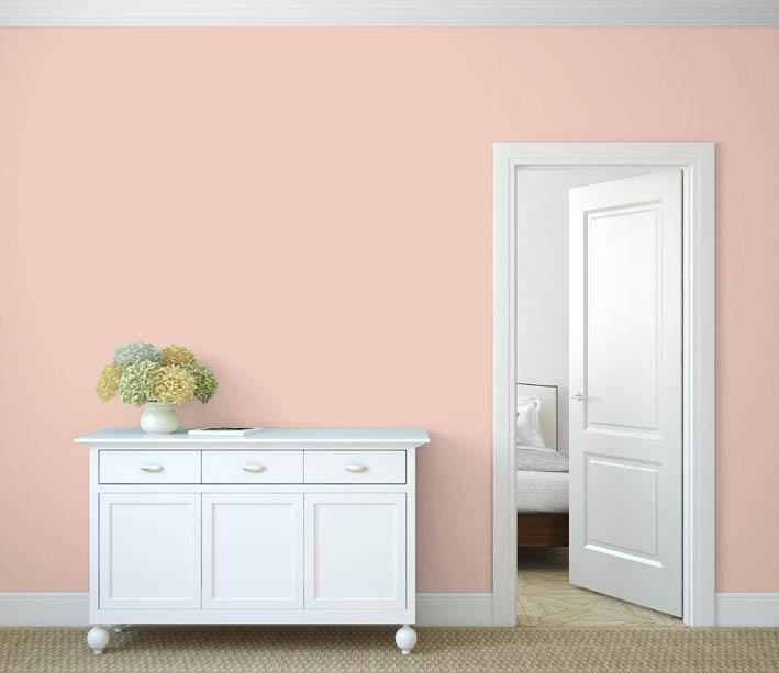 Interiérová barva odstín LACHS 20