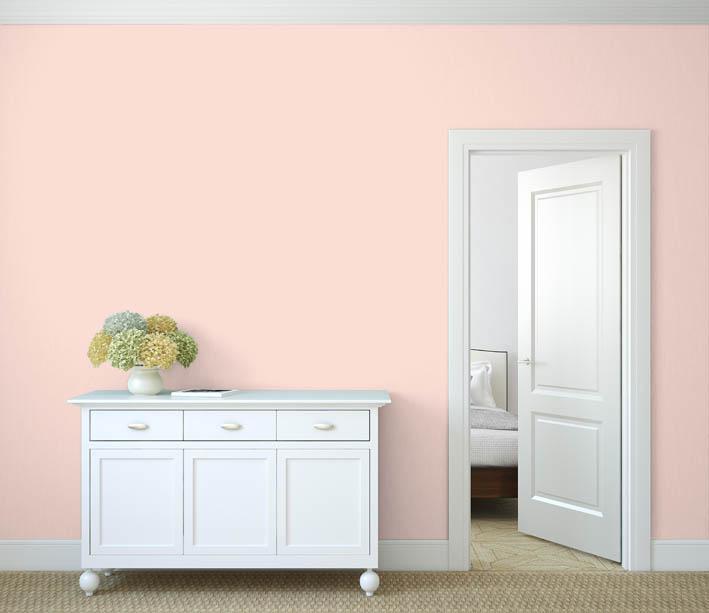 Interiérová barva odstín LACHS 25