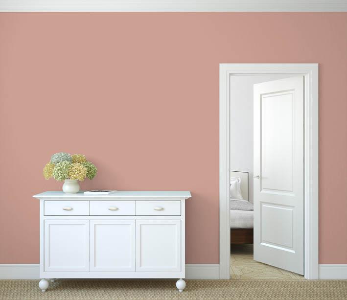 Interiérová barva odstín LACHS 45
