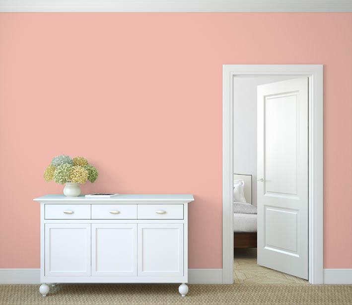 Interiérová barva odstín LACHS 55
