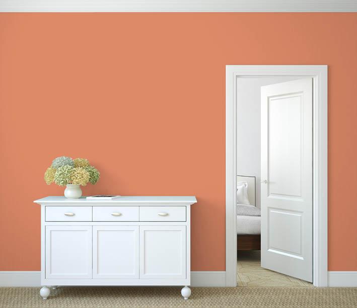 Interiérová barva odstín LACHS 75