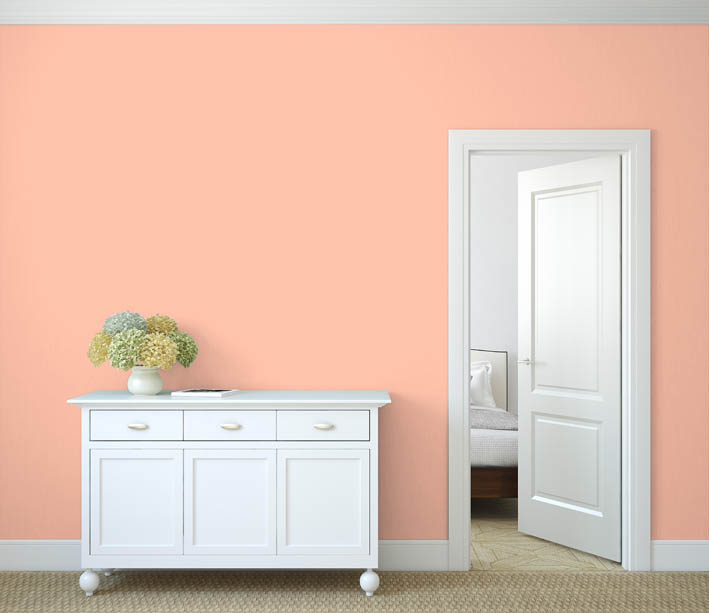 Interiérová barva odstín LACHS 85