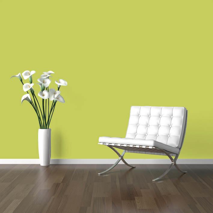 Interiérová barva odstín MAI 80