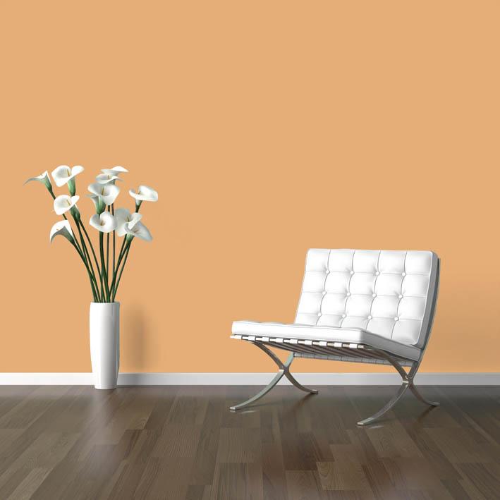 Interiérová barva odstín ONYX 165