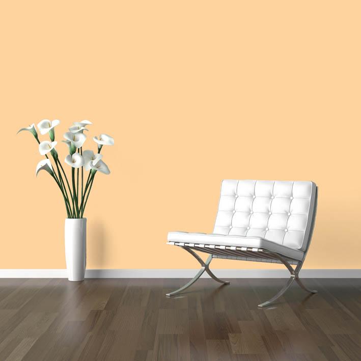Interiérová barva odstín ONYX 205