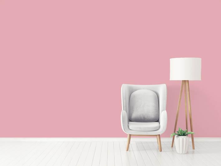 Interiérová barva odstín ROSE 120