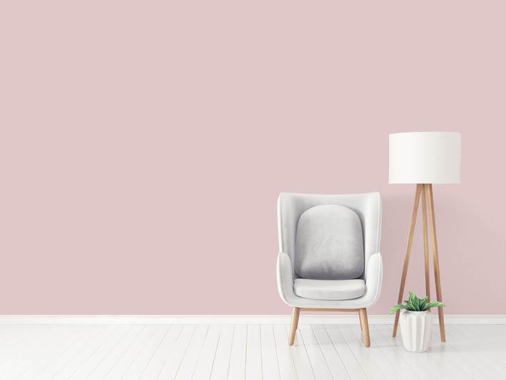 Interiérová barva odstín ROSE 55