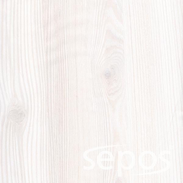 borovice bělená