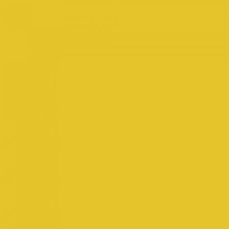 Interiérová barva odstín CURRY 130